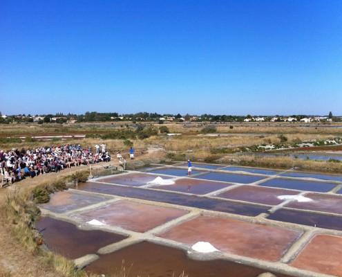 Marais Salant des Salines, visite du Parc d'aventure du sel et rencontre des Sauniers