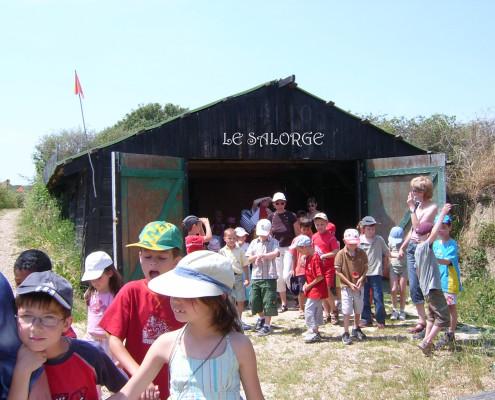 Visite et découverte ludique des Marais aux Sables d'Olonne