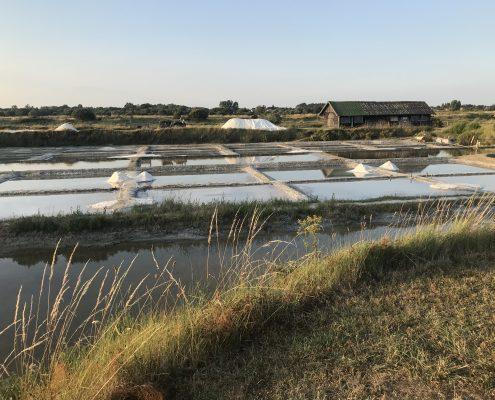 visite des Marais Salants, Vendée, Les Sables d'olonne
