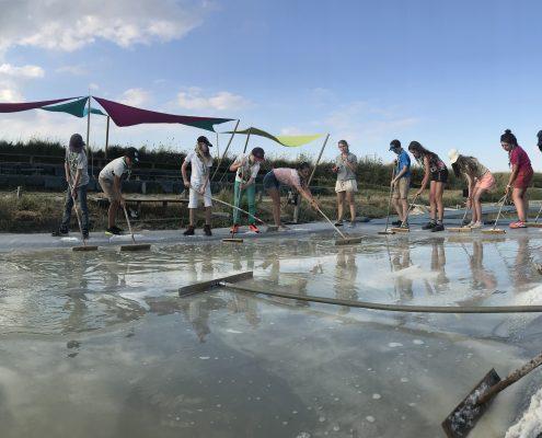 Récolte de sel des enfants. Visite ludique enfant dans le Marais aux Sables d'Olonne, Vendée